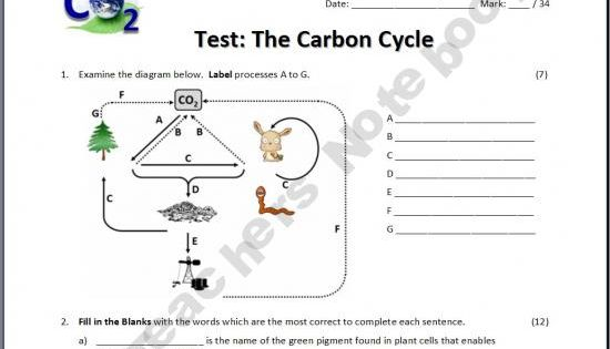 The Carbon Cycle Test 9th 12th Grade Pinterest