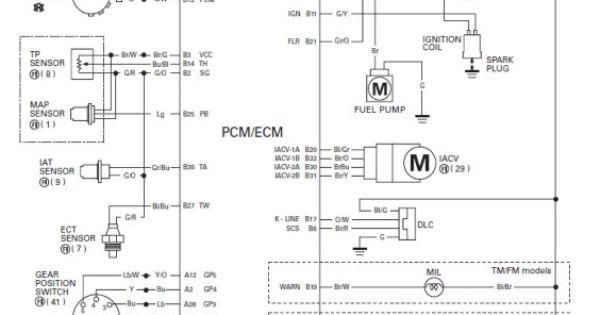 Wiring Diagram For 2006 Honda Rancher : Honda foreman wiring diagram http hondaforeman