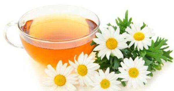 Sabes para que sirve la manzanilla como planta medicinal for Manzanilla planta medicinal para que sirve