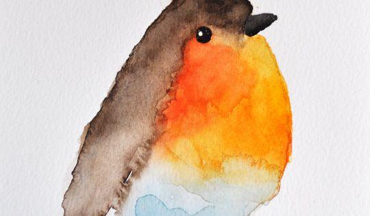 little watercolor bird