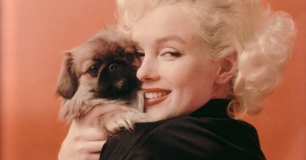Marilyn Monroe and furry friend, photo by Milton Greene (1955)