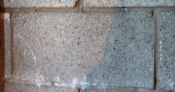 how to get rid of black mold on basement walls basements