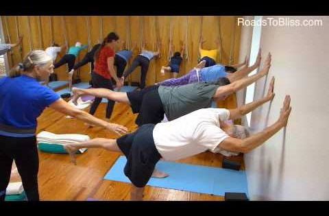 A 50+ Iyengar Yoga class - Lois Steinberg's perspective ...