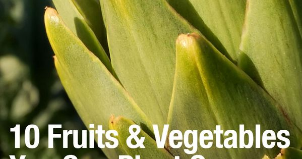 10 Fruits Vegetables You Can Plant Once -- And They Will Keep