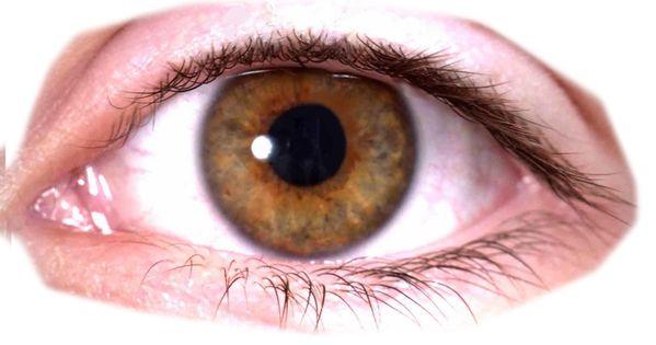 Eyes Png Image Png Images Png Best Background Images