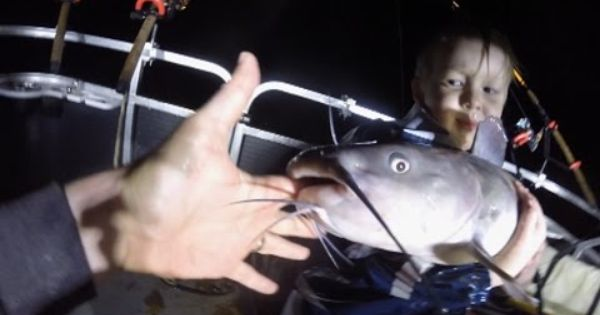Funny Fish Video Catfish Bites My Finger Hilarious Fishing Humor Catfish Fishing Videos