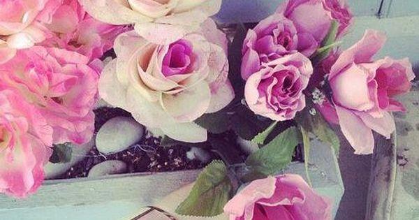 صور جميله جدا خلفيات و رمزيات حلوة وجميلة ميكساتك Rose Plants Flowers