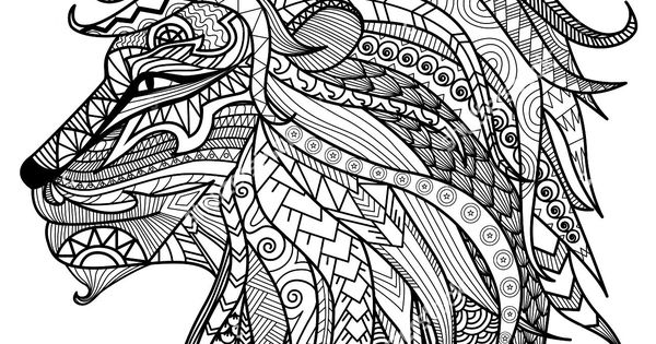 Adult Coloring Pages Lion Head | Adult Coloring Pages and ...Lion Head Coloring Pages For Adults