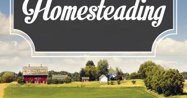Check out land and farm for sale how to buy property for for Where to buy cheap land for homesteading