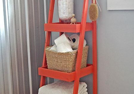 DIY Painter's Ladder Shelf....cute bathroom idea
