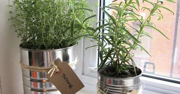 how to create a herb garden