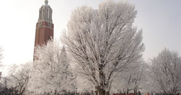 Top Universities And Colleges In South Dakota South Dakota South Dakota State Black Hills South Dakota
