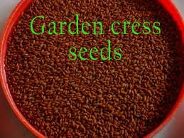 Benefits Of Gardencress Seeds Halim Aliv With Images Seeds