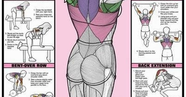 Back Workout to strengthen your Health and Fitness routine... workout body fit