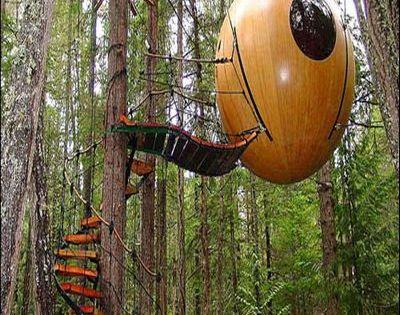 Tree houses; no more a child's dream | Designbuzz : Design ideas