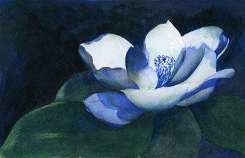 Analogous Color Scheme Colbalt Blue Ultramarine Blue And