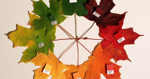 fall color wheel