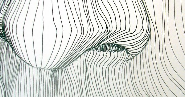 cross contour line drawing | Drawing | Pinterest ...
