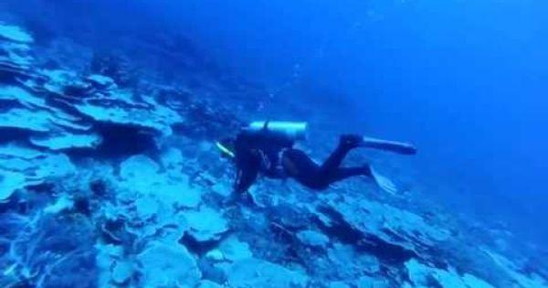 Benham Rise: PH's new territory off Aurora: Based on the ...