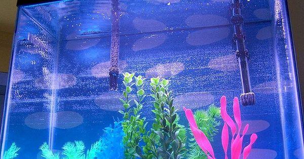 كيفية تنظيف حوض السمك Neon Signs Aquarium Neon