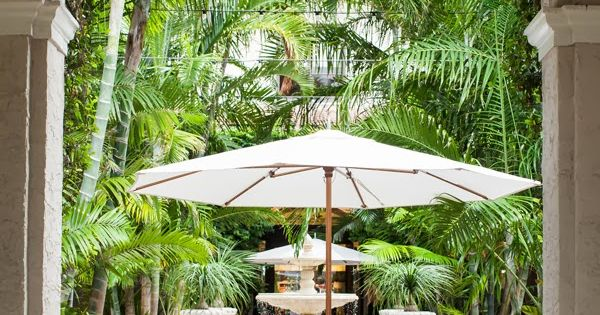 With love from kat palm beach photo diary le cose che for Jardin west palm