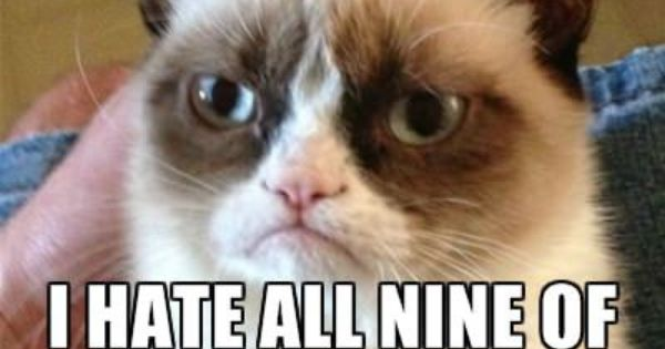Grumpy cat humor!