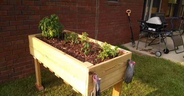 Counter Height Vegetable Garden : Counter Height Garden Boxes 2 feet x 4 feet Do It Yourself Home ...