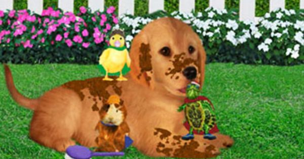 The Wonder Pets Save The Puppy Wonder Pets Cute Puppy Videos Animal Tv
