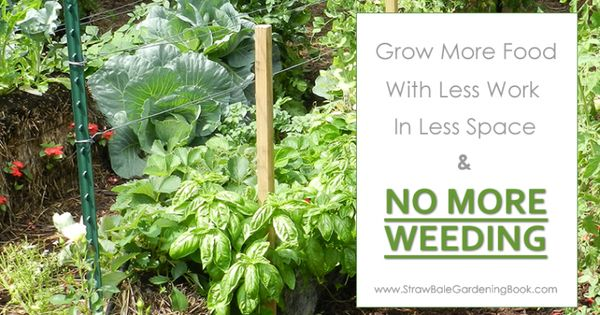 How to grow more food in less space with less work no more weeding http www - Weeding garden make work easier ...