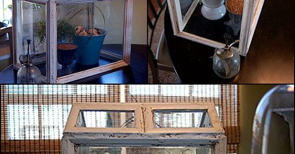 Diy Terrarium Upcycled Frame Into A Wardian Case