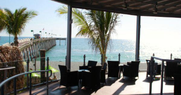 Ophelia S Sarasota: Fins At Sharkys Venice, Florida Waterfront