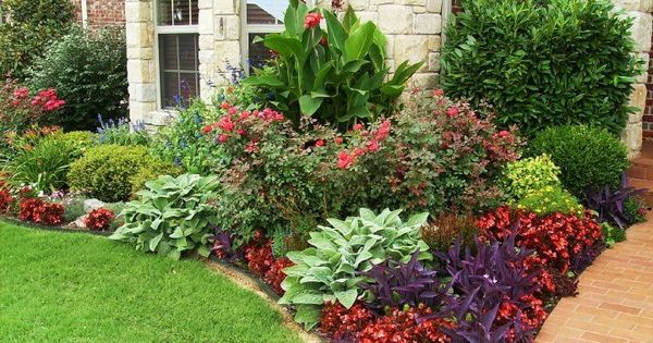 Front Entry Flower Bed Unique By Design Canna Zone 7 11