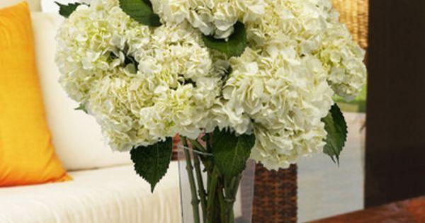 Costco Wedding Gift Ideas : ... wedding - costco 30 stems USD94.99 Wedding Pinterest Stems, Costco
