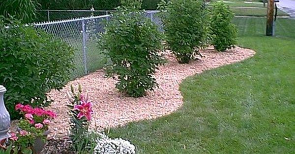Landscape Along Chain Link Fence Greenery Pinterest Landscaping Along Fence Fence Landscaping Fence Plants