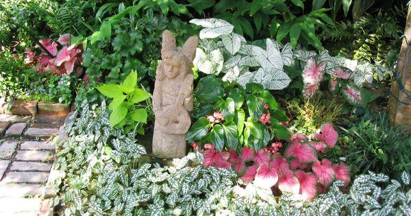 Partial shade garden designs shade gardening takes for Part shade garden designs
