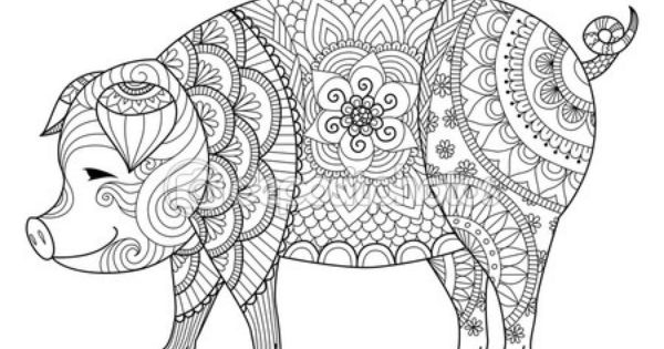 Zentangle Dibujo De Cerdo Para Colorear Libro Para Adulto U Otras Decoraciones
