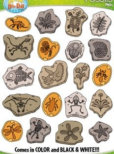 30+ Fossil Clipart Black And White