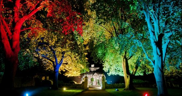 TREE UPLIGHTING - Google Search | A&T | Pinterest | Stromy, Osvetlenie a  Outdoor - - Outdoor Up Lighting For Trees Naura Homes
