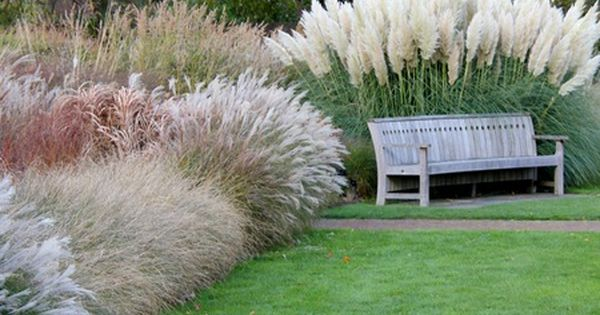 Ornamental Grasses Landscaping  Using Ornamental Grasses in Your Garden  {green ...