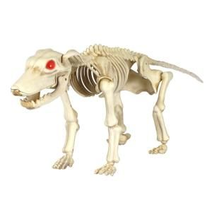 Home Accents Holiday 11 In Animated Skeleton Dog With Led Illuminated Eyes 6342 19479 With Images Dog Skeleton Fun Halloween Decor Props Animation