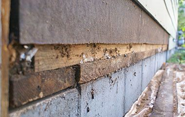 Replace A Section Of Hardboard Or Masonite Siding With New Fiber Cement Siding Panel Masonite Siding Fiber Cement Siding Siding Repair