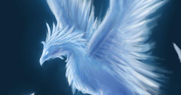 Winter Phoenix - Contest Entry by *ShadowDragon22 on deviantART