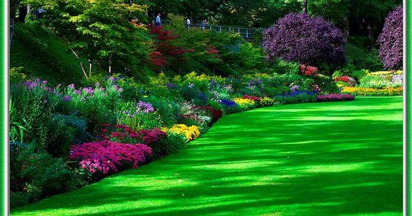Como decorar un jard n con flores para m s informaci n for Como decorar un jardin con plantas