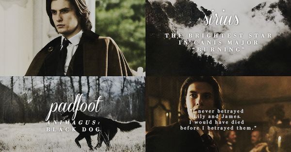 the marauders | The Marauders and Lily | Pinterest ...