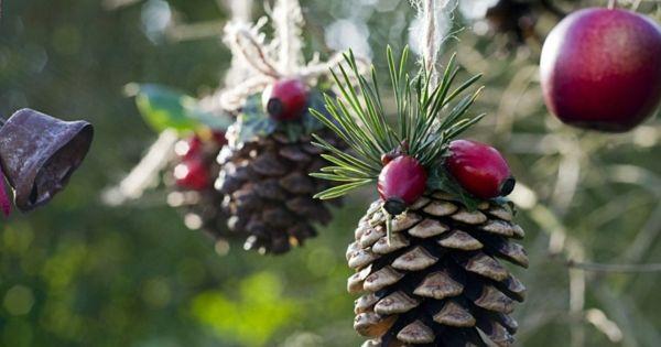 Bastelideen zu weihnachten zapfen hagebutten weihnachten - Billige weihnachtsdeko ...
