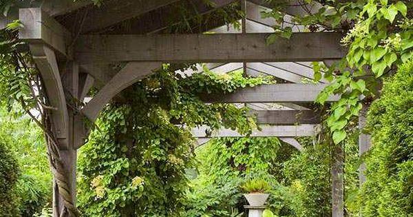 Pergola De Jardin En Bois 20 Super Id Es De Design Pergola En Bois Plante Grimpante Et Bois Brut