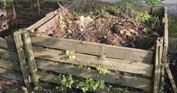 dbd35daa31e8dc634c5ecaaf08252e2e - Is Composted Manure Safe For Vegetable Gardens