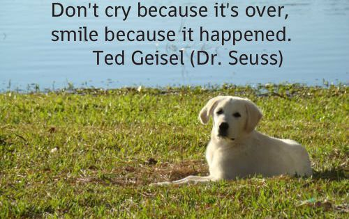 Pet Loss Quote