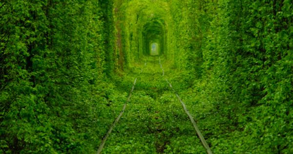 All Things Ukrainian - The Tunnel of Love - An Old Train