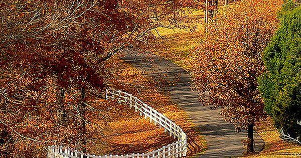 backroad in Shenandoah Valley, Virginia